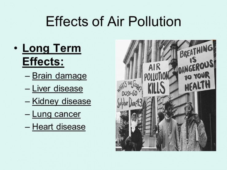 New research exposes the effects of air pollution on your kidneys