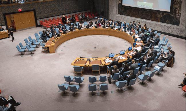 German FM: UN Security Council 'no longer up to date,' needs reform