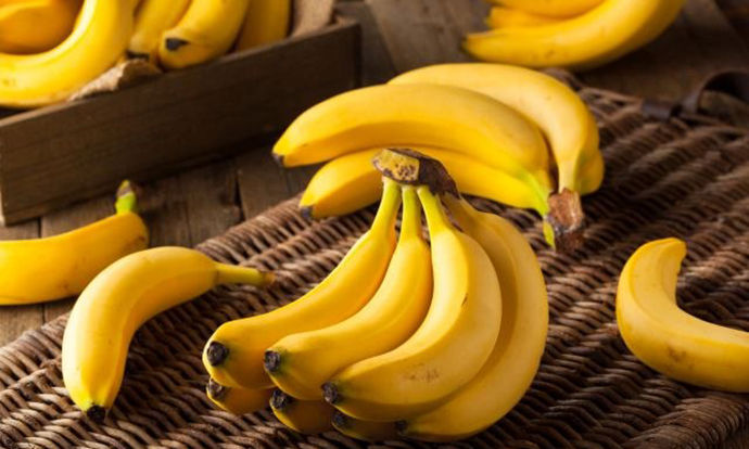 615 kg of cocaine found in banana shipment