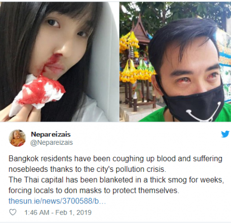 Bangkok citizens cough up blood as city is blanketed in thick smog