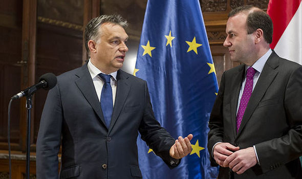 Weber initiates talks with Orban