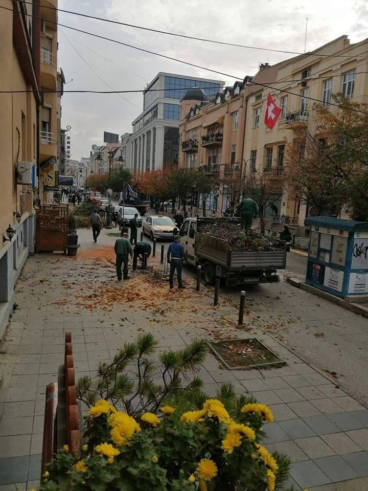 City of Skopje chops down the beloved cherry trees along Maxim Gorki street