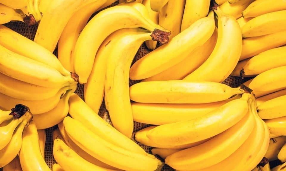 """Krusopek cocaine found in bananas imported by """"Baneks"""" company"""