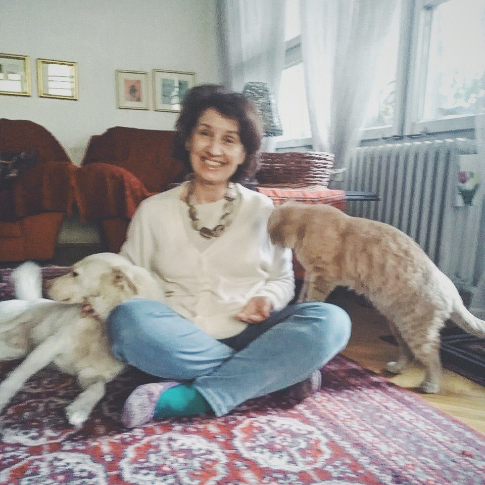 Siljanovska-Davkova: During the curfew, the government must allow dogs to go outside briefly