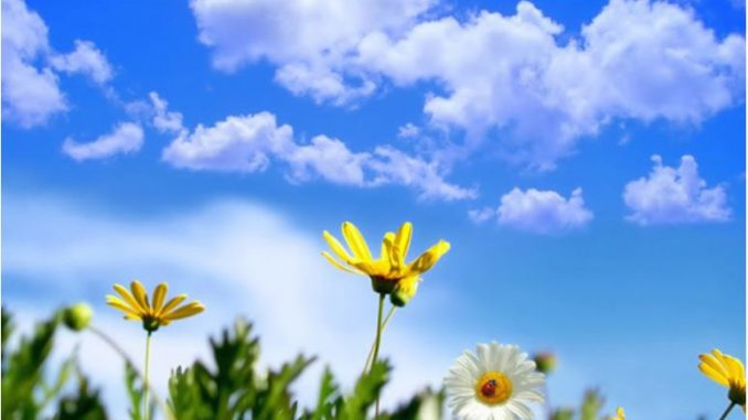 Sunny weather with temperatures up to 23C