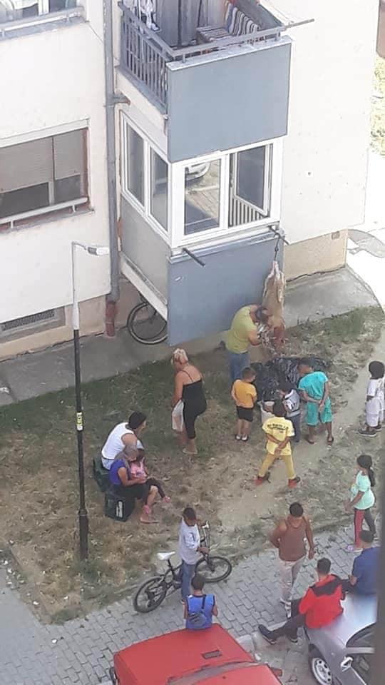 Backyard slaughtering of animals for Kurban Bajram filmed in Ohrid