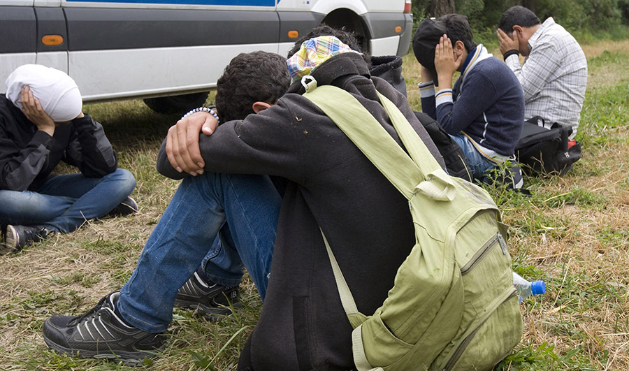 Ten illegal migrants stopped near the border with Serbia