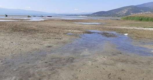 Environmentalists raise alarm as lake Prespa continues to dry out