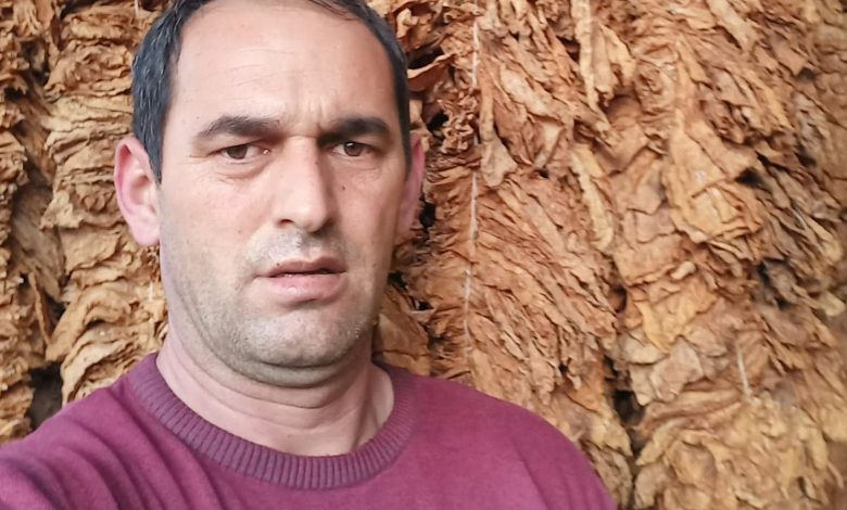 Dolneni, one of Macedonia's main tobacco growing regions, is hit hard by the drop in prices
