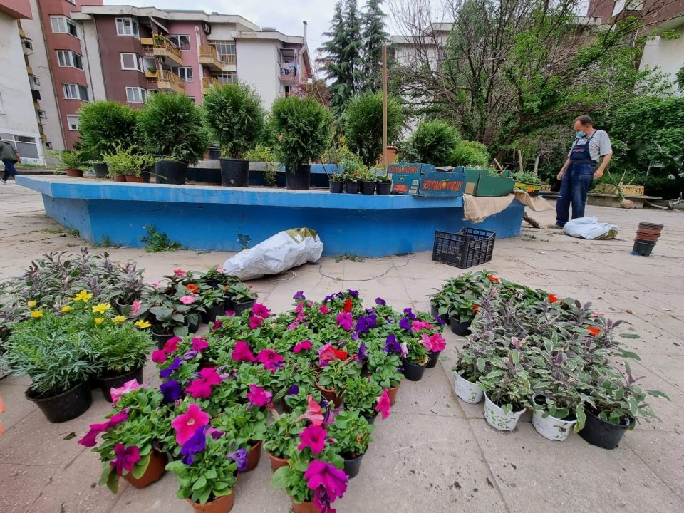 After a badly botched urban renewal project, municipal authorities in a part of Skopje began converting fountains into flower beds