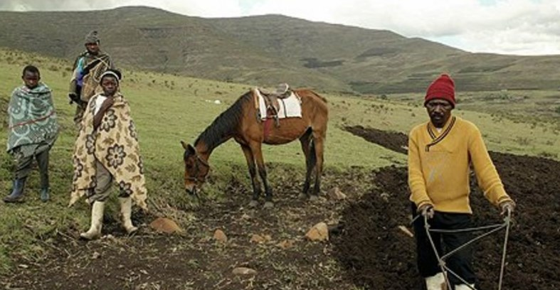 Lesotho set to export 8.5 tonnes of marijuana to Macedonia