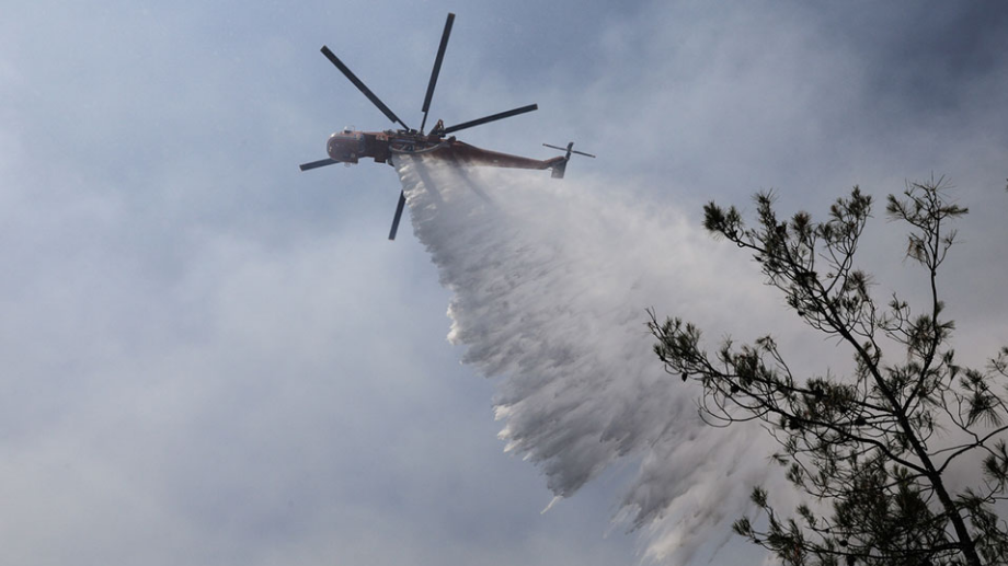 Slovenia to help Macedonia's fight against forest fires