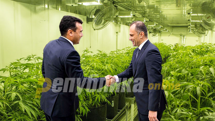 Zaev from Europe recognizes only the European flag on the marijuana law for his plant