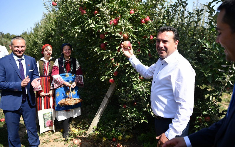 Ahead of the elections, Zaev promises subsidies to Prespa apple farmers