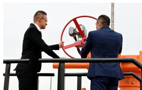 Hungary and Serbia open their new gas connector